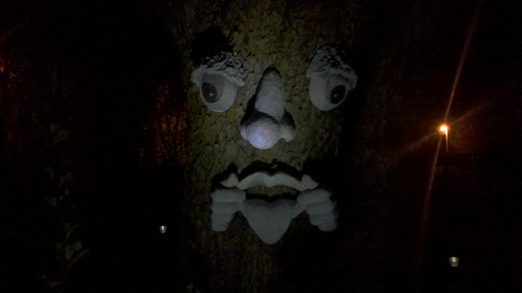 esprit de l'arbre